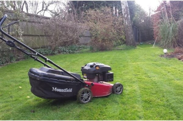Tactics to Keep in Mind for Lawn Mowing