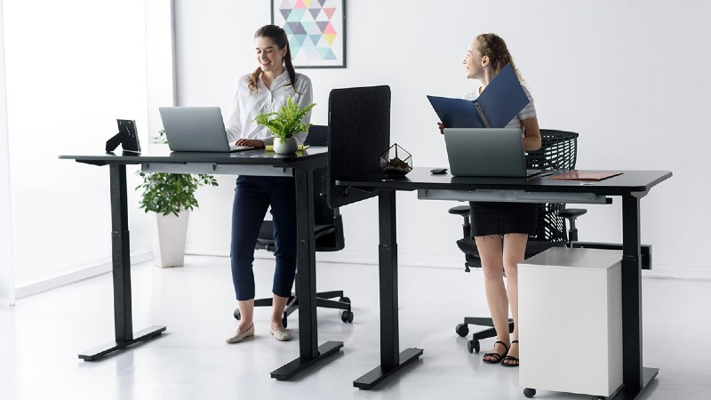 Why Should You Buy Aiterminal Two Surface Electric Stand Up Desk?