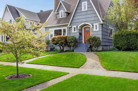 3 Things You Should Add to Your Yard Cleanup List
